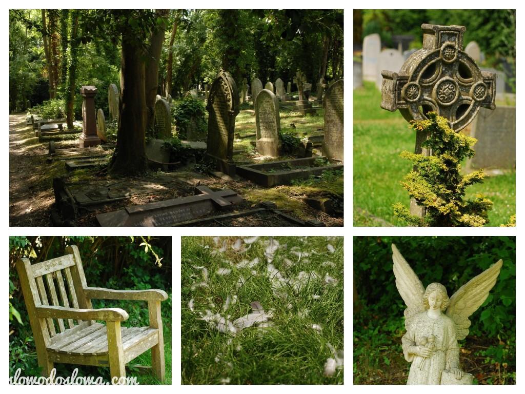 cmentarz'13