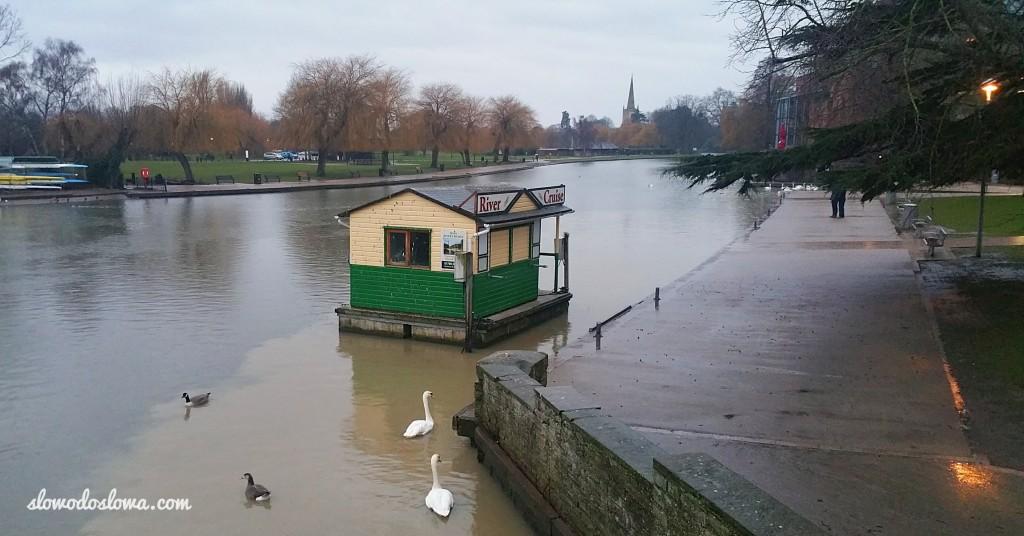 Nad rzeką Avon