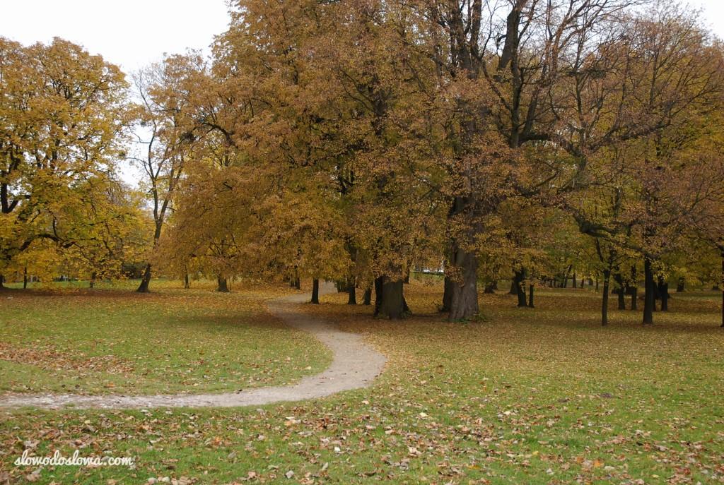 Jesień na zamku w Janowcu