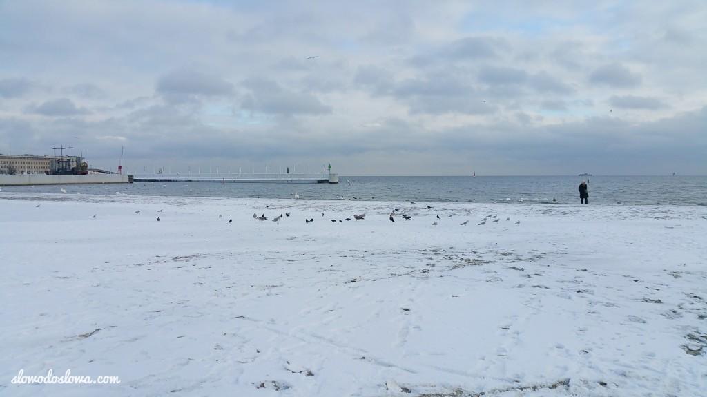 Zima w Trójmieście, Gdynia