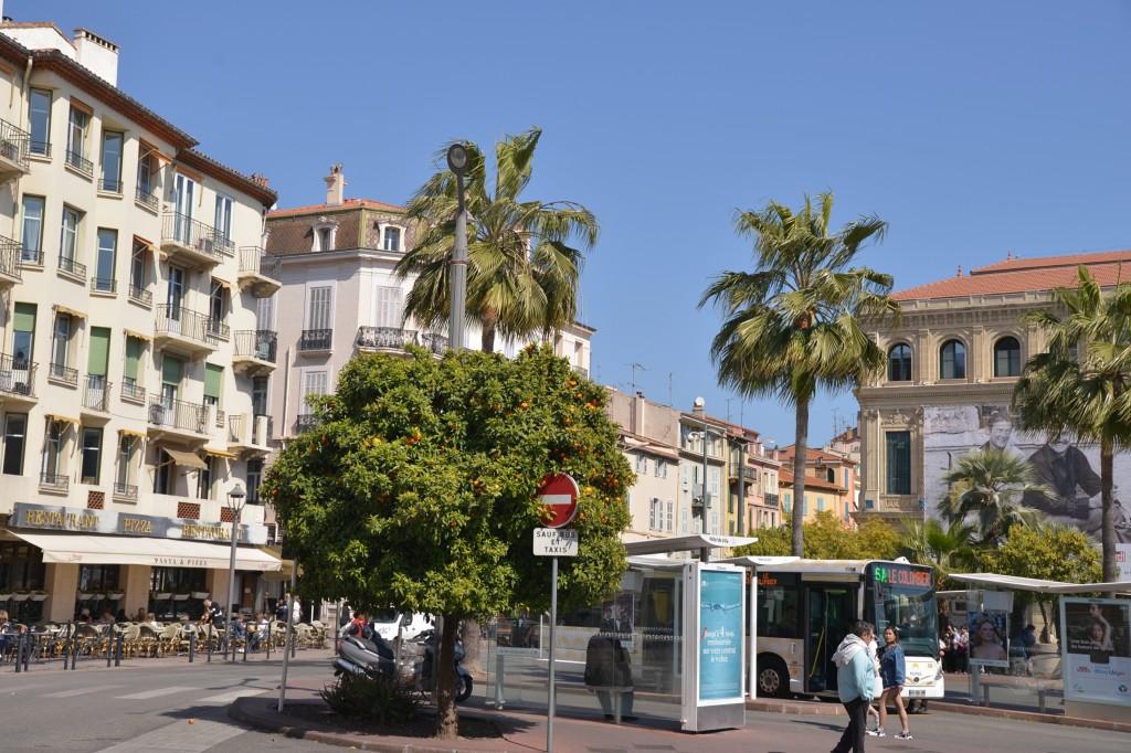 Południe Francji - Cannes