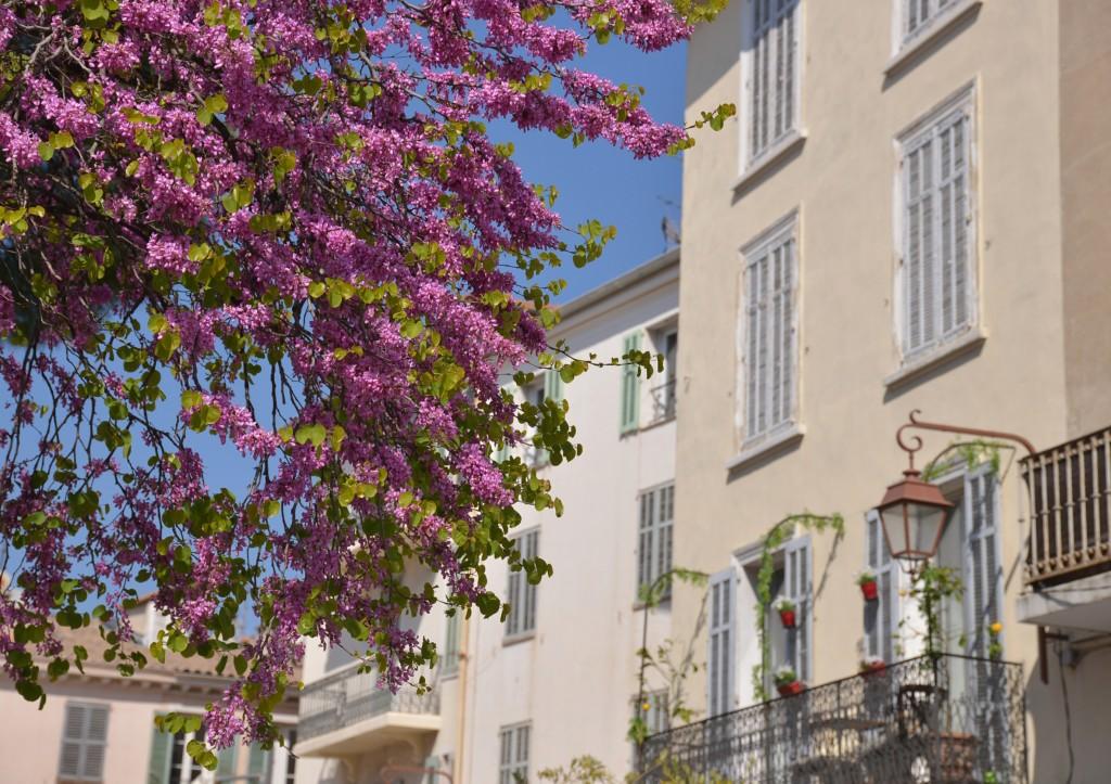 #Cannes - wiosna w mieście
