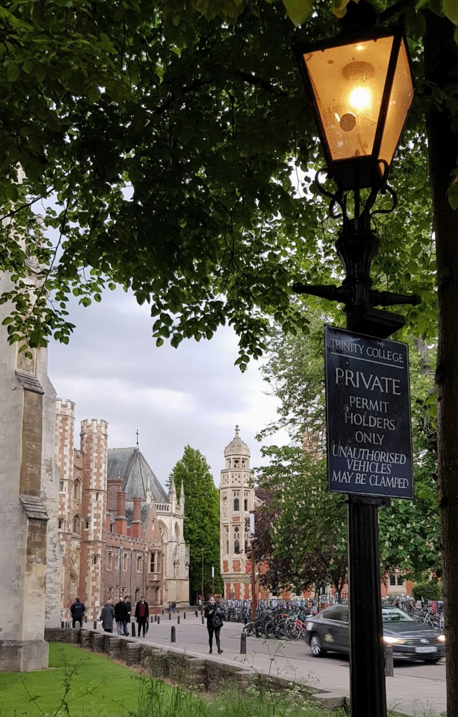 Cambridge w maju