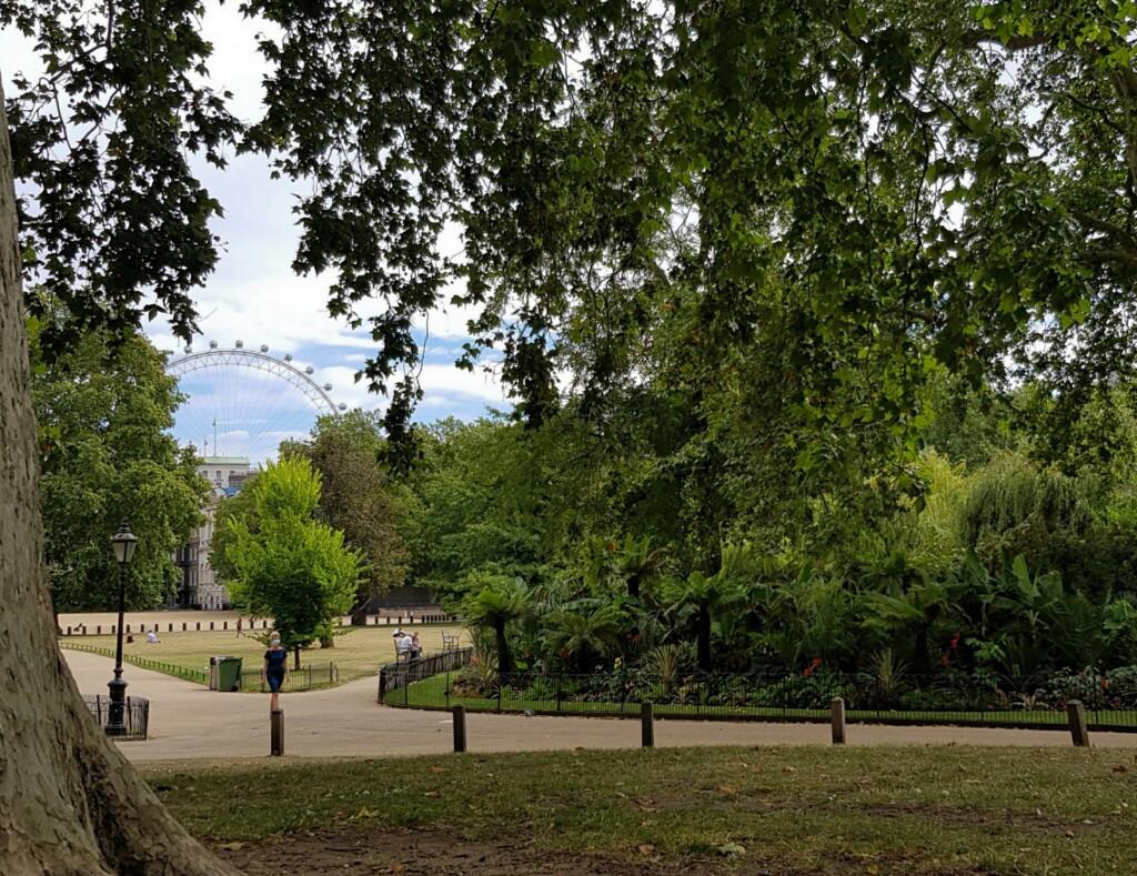 St.James Park 2