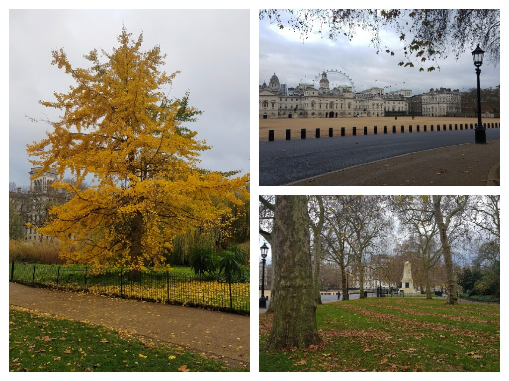 1. Jesień w parku