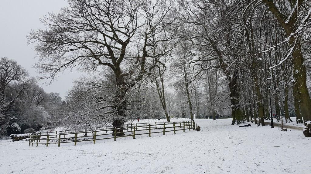 16. Snow