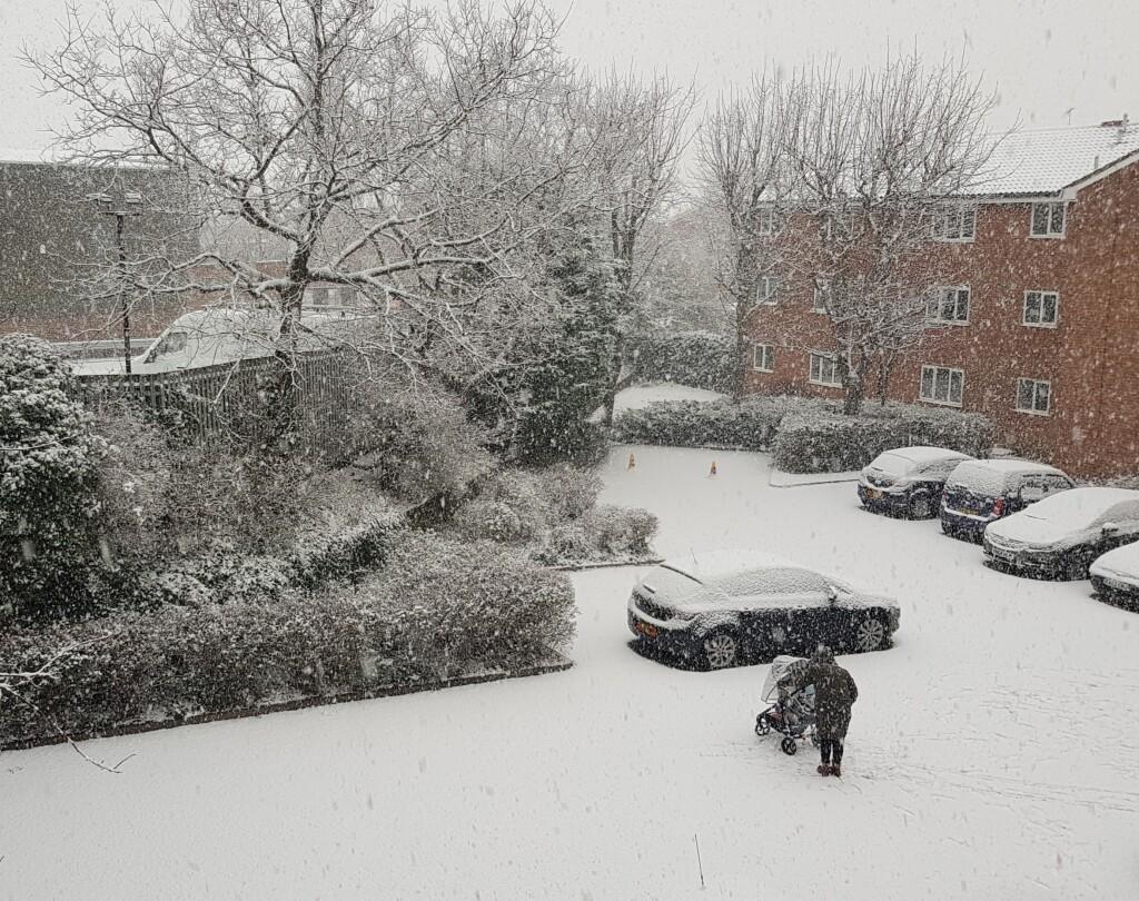 22. Snow