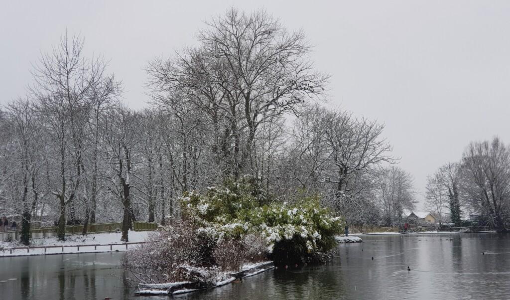 7. Snow