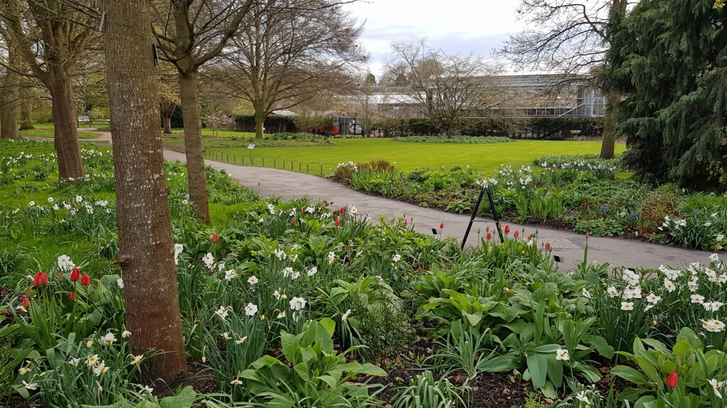 Ogród Botaniczny w Cambridge