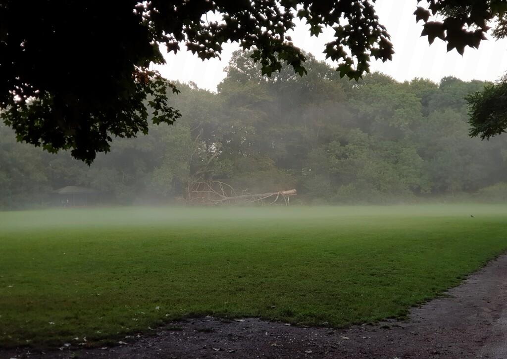 Hampsted Heath po deszczu